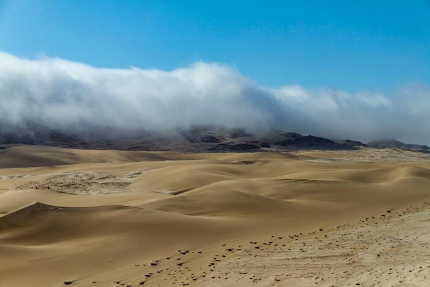 west coast namibiaedit